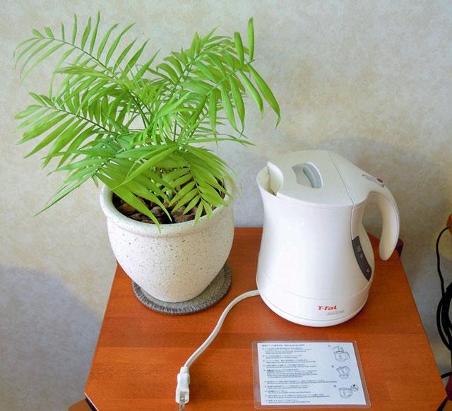 名古屋マリオットアソシア_観葉植物